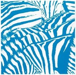 zebra1'.jpg