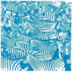 zebra2'.jpg